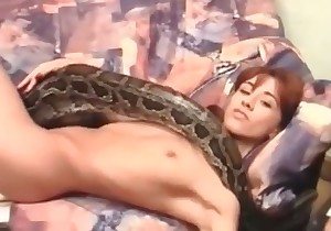 Snake in the bestiality action